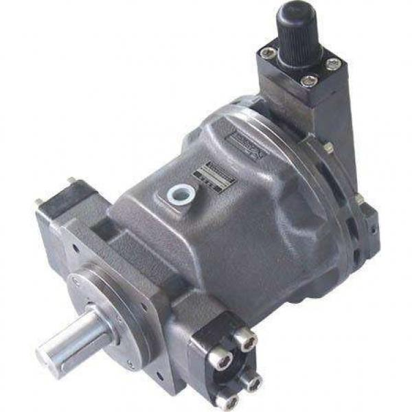 PAKER F12-030-MF-IV-K-000-000-0 Piston Pump #2 image