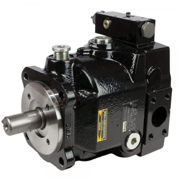 PAKER F12-030-MF-IV-K-000-000-0 Piston Pump #1 image