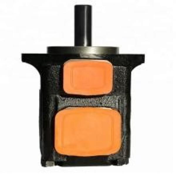 DENISON T6E-050-2R03-A1 vane pump #1 image